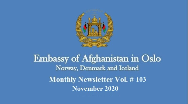 Monthly Newsletter November 2020